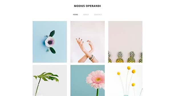 Website Builder template 'Modus Operandi'